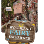 Woodland Fairy Experience.September, 2017